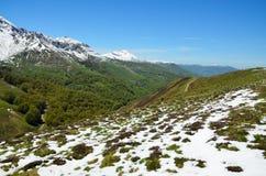 Πράσινες κλίσεις με τα βουνά χιονιού την άνοιξη στοκ εικόνα με δικαίωμα ελεύθερης χρήσης