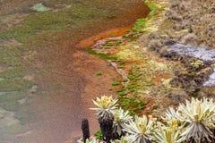 Πράσινες λιμνοθάλασσες στο πόδι του ηφαιστείου Chiles στοκ φωτογραφίες