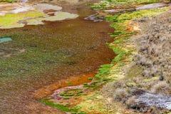 Πράσινες λιμνοθάλασσες στο πόδι του ηφαιστείου Chiles στοκ εικόνα