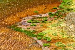 Πράσινες λιμνοθάλασσες στο πόδι του ηφαιστείου Chiles στοκ εικόνα με δικαίωμα ελεύθερης χρήσης
