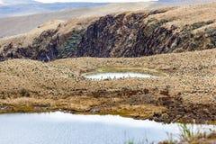 Πράσινες λιμνοθάλασσες στο πόδι του ηφαιστείου Chiles στοκ φωτογραφίες με δικαίωμα ελεύθερης χρήσης