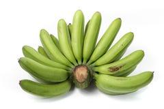 Πράσινες μπανάνες στοκ εικόνες με δικαίωμα ελεύθερης χρήσης