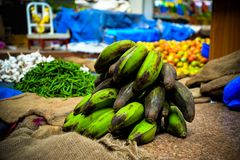 Πράσινες μπανάνες στοκ φωτογραφίες με δικαίωμα ελεύθερης χρήσης