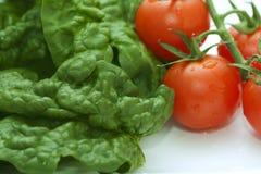 πράσινες ντομάτες σπανακ&io Στοκ Εικόνες