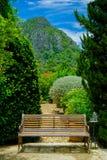 Πράσινες ξύλινες καρέκλες στον κήπο Στοκ Εικόνα