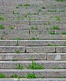 πράσινες πέτρες πετρών σκαλών χλόης Στοκ φωτογραφίες με δικαίωμα ελεύθερης χρήσης