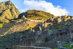 Πράσινες πεζούλια και καταστροφές Picchu Machu με τα βουνά στην πλάτη Στοκ Εικόνες