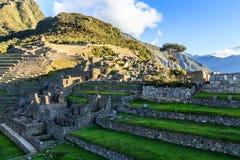 Πράσινες πεζούλια και καταστροφές Picchu Machu με τα βουνά στην πλάτη Στοκ φωτογραφία με δικαίωμα ελεύθερης χρήσης