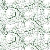 Πράσινες σγουρές άμπελοι με τα φύλλα, άνευ ραφής σχέδιο Στοκ Φωτογραφία