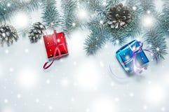 Πράσινες φυσικές ερυθρελάτες Χριστουγέννων εμβλημάτων διακοπών με το κόκκινο και μπλε δώρο σε ένα ελαφρύ ξύλινο υπόβαθρο Ευτυχής  Στοκ Φωτογραφίες