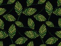 Πράσινη άνευ ραφής ταπετσαρία φύλλων Στοκ Φωτογραφία