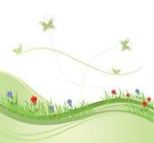 πράσινη άνοιξη 2 πεδίων απεικόνιση αποθεμάτων