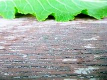 Πράσινη άδεια άνωθεν παλαιό στον ξύλινο Επίδραση προοπτικής κείμενο ανασκόπησής σας Στοκ φωτογραφία με δικαίωμα ελεύθερης χρήσης