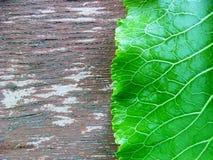 Πράσινη άδεια ευθεία παλαιό στον ξύλινο κείμενο ανασκόπησής σας Στοκ φωτογραφία με δικαίωμα ελεύθερης χρήσης