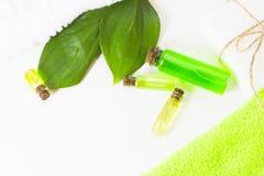 Πράσινη έννοια Aromatherapy Στοκ Φωτογραφίες