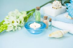 Πράσινη έννοια Aromatherapy Στοκ Εικόνα