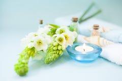 Πράσινη έννοια Aromatherapy Στοκ Εικόνες