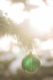 Πράσινη ένωση σφαιρών Χριστουγέννων στο χειμερινό δέντρο Στοκ φωτογραφίες με δικαίωμα ελεύθερης χρήσης