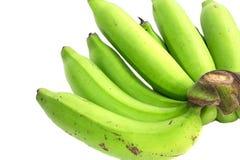 Πράσινη δέσμη μπανανών Στοκ Εικόνα