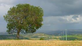 Πράσινη ανάπτυξη δέντρων στον τομέα, ανεμοστρόβιλοι που περιστρέφουν, θυελλώδης ουρανός, πραγματικός - χρονικός πυροβολισμός απόθεμα βίντεο