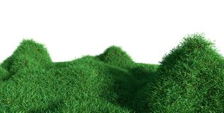 Πράσινη ανάπτυξη χλόης στους λόφους στοκ εικόνες