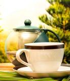 Πράσινη αναζωογόνηση και καφετέρια ποτών μέσων σπασιμάτων τσαγιού στοκ φωτογραφία με δικαίωμα ελεύθερης χρήσης