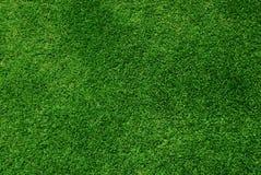 Πράσινη ανασκόπηση χλόης Στοκ Φωτογραφίες