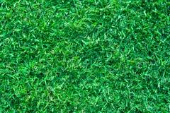 Πράσινη ανασκόπηση χλόης Στοκ εικόνα με δικαίωμα ελεύθερης χρήσης