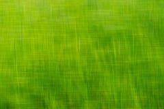 Πράσινη ανασκόπηση Στοκ εικόνες με δικαίωμα ελεύθερης χρήσης