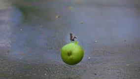 Πράσινη ανατίναξη μήλων έξοχος σε αργή κίνηση πυροβολισμός 500 fps απόθεμα βίντεο