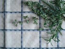 Πράσινη ανθοδέσμη των χορταριών σε μια γωνία σε μια πετσέτα Στοκ εικόνα με δικαίωμα ελεύθερης χρήσης
