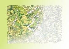 Πράσινη απεικόνιση άνοιξη doodle, μισός χρωματισμός διανυσματική απεικόνιση