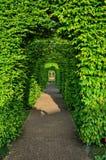 Πράσινη αλέα θάμνων, πάρκο Keukenhof, Lisse στην Ολλανδία Στοκ φωτογραφία με δικαίωμα ελεύθερης χρήσης