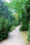 Πράσινη αλέα πάρκων Στοκ φωτογραφίες με δικαίωμα ελεύθερης χρήσης
