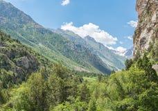 Πράσινη βουνοπλαγιά Στοκ εικόνα με δικαίωμα ελεύθερης χρήσης
