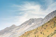 Πράσινη βουνοπλαγιά στοκ εικόνες