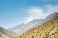 Πράσινη βουνοπλαγιά στοκ εικόνα