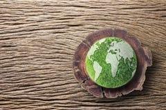 Πράσινη γη στο κολόβωμα στοκ φωτογραφίες