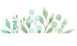 Πράσινη ελιά θερινών γιρλαντών γαμήλιας άνοιξης φύλλων συνόρων πλαισίων στεφανιών Watercolor απεικόνιση αποθεμάτων
