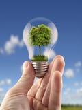 Πράσινη ενέργεια Στοκ εικόνες με δικαίωμα ελεύθερης χρήσης