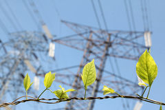 Πράσινη ενέργεια Στοκ Φωτογραφίες