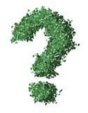 πράσινη ερώτηση σημαδιών Στοκ Εικόνες