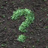 πράσινη ερώτηση σημαδιών Στοκ Εικόνα