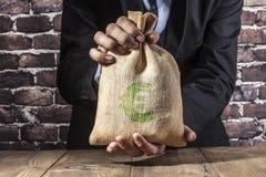 Πράσινη ευρο- τσάντα Στοκ Εικόνα