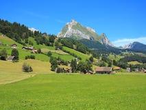 Πράσινη διαβίωση στον ορεινό όγκο βουνών στοκ φωτογραφία με δικαίωμα ελεύθερης χρήσης