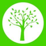 Πράσινη διανυσματική απεικόνιση της σκιαγραφίας δέντρων στο στρογγυλό πλαίσιο Στοκ Εικόνα
