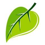 Πράσινη διανυσματική απεικόνιση φύλλων Στοκ Εικόνες