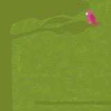 Πράσινη κάρτα με το δέντρο και τον παπαγάλο Στοκ φωτογραφία με δικαίωμα ελεύθερης χρήσης