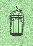 Πράσινη κάρτα Στοκ Φωτογραφία