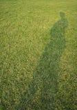 Πράσινη κίτρινη έννοια χλόης γραμμών ισογείων σκιών Στοκ φωτογραφίες με δικαίωμα ελεύθερης χρήσης